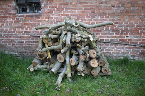 das Nussi-Brennholz