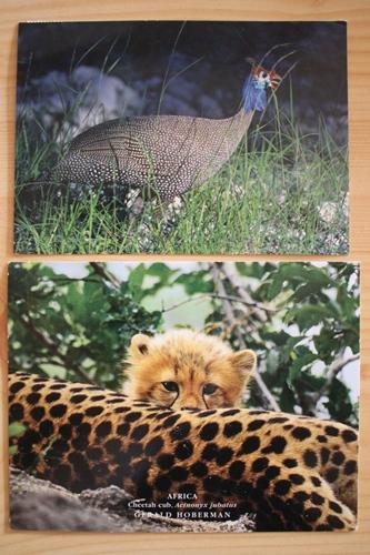 Post aus Afrikanien