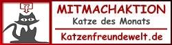 mitmachaktion_kdm