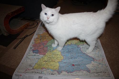 Ich auf der Karte