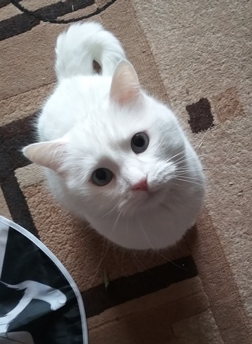 Mama!!! Spiel mit mir!
