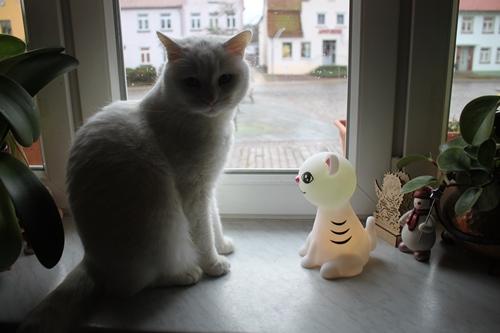 Wer ist das? Kitty?